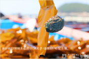 청산바다 전복650.png